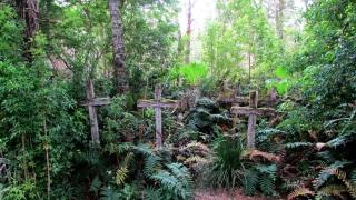 Isla de los Muertos_cementerio